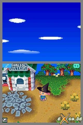 Animal Crossing: Wild World - 158028-vollbild