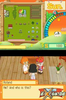 MySims: Kingdom - DS Screenshot