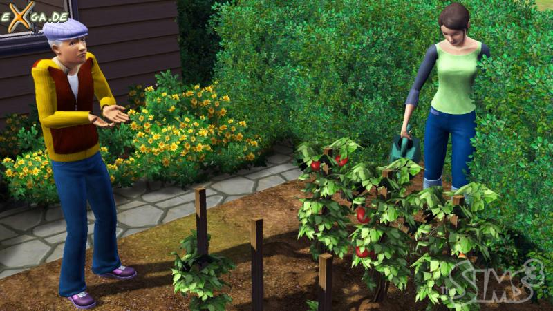 The Sims 3 - screenshot_1_big
